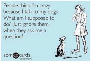 a4e8cbada5c343a0b3d8b9e80a8938a0--crazy-dog-lady-crazy-person