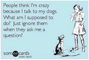 a4e8cbada5c343a0b3d8b9e80a8938a0--crazy-dog-lady-crazy-person