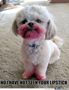no-i-have-not-seen-your-lipstick_o_882524